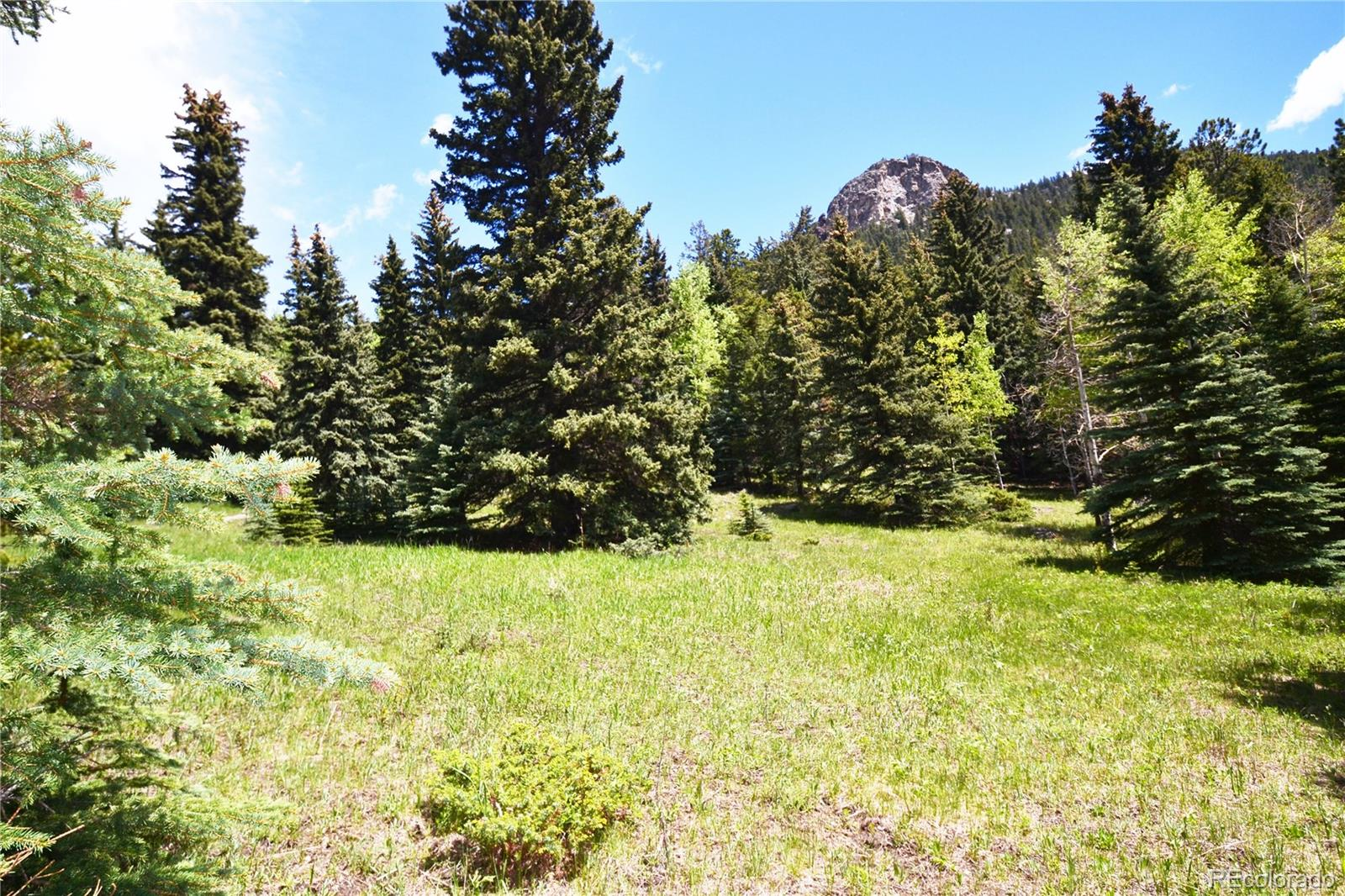 14 Witter Gulch Road, Evergreen, CO 80439 - Evergreen, CO real estate listing