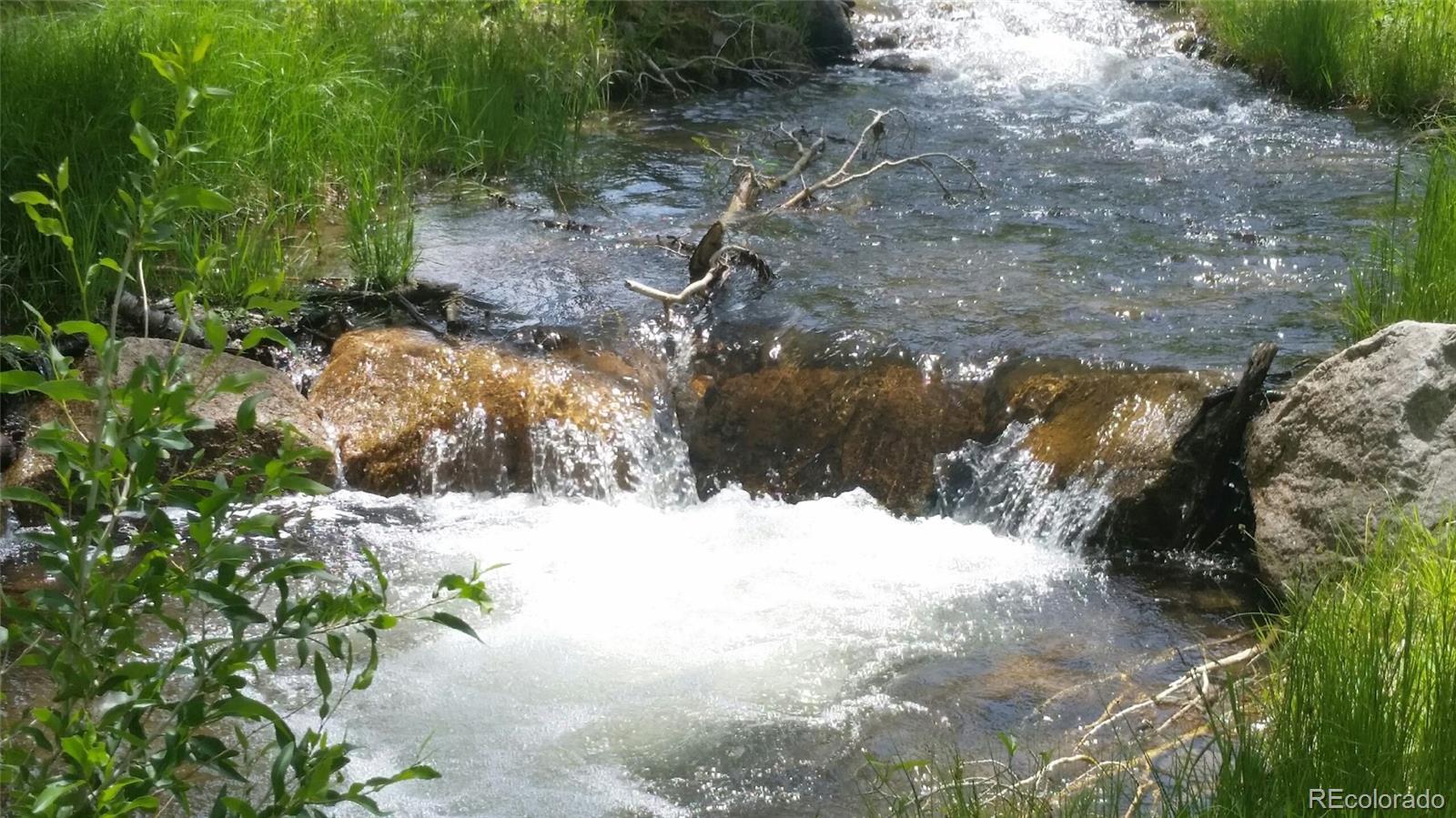 1144 Lake Creek Lane Property Photo - Cotopaxi, CO real estate listing