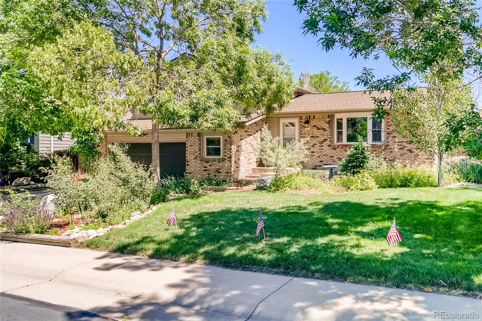 924 Mountain View Drive Property Photo - Castle Rock, CO real estate listing