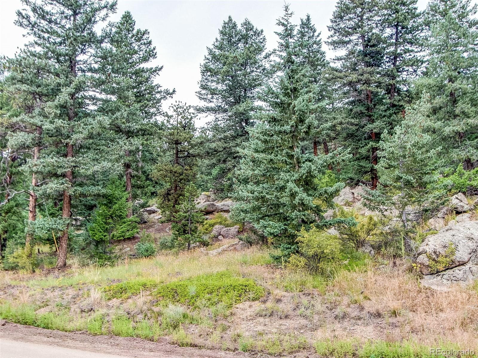 22075 High Springs Trail Property Photo - Morrison, CO real estate listing