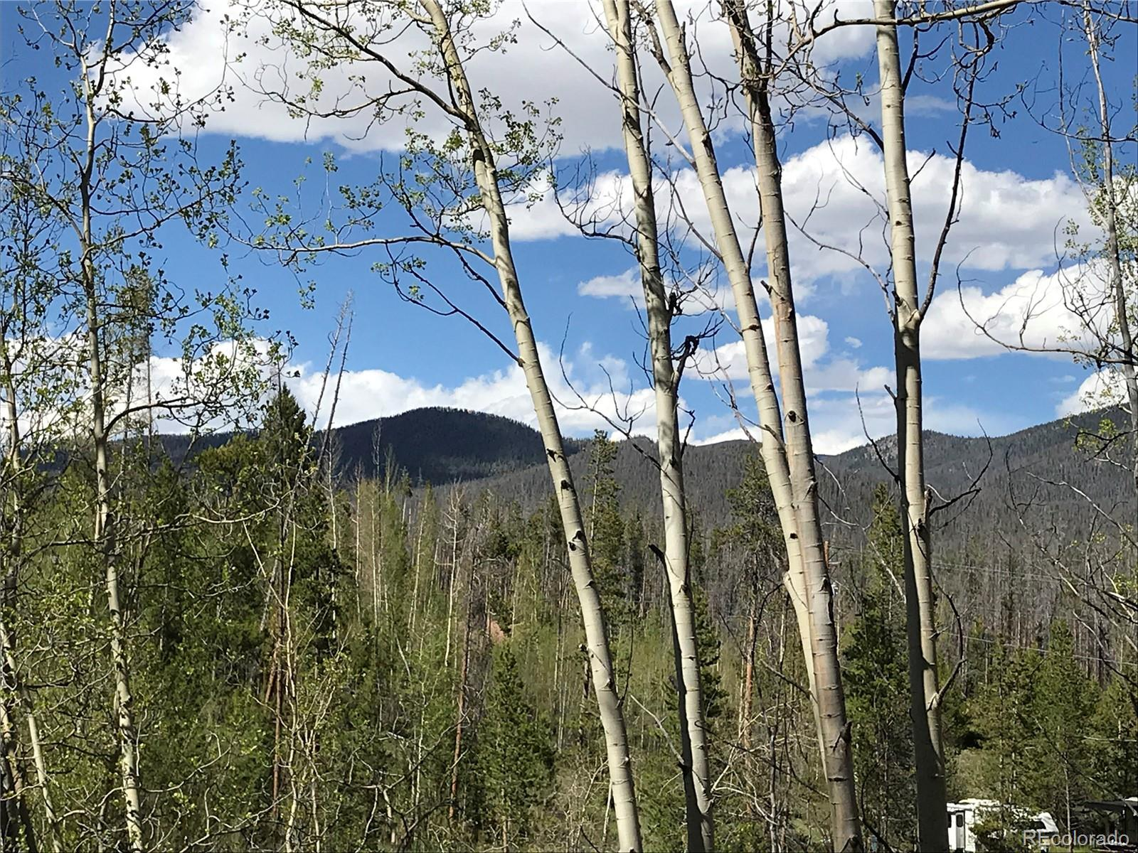 122 Mad Moose Lane Property Photo - Grand Lake, CO real estate listing