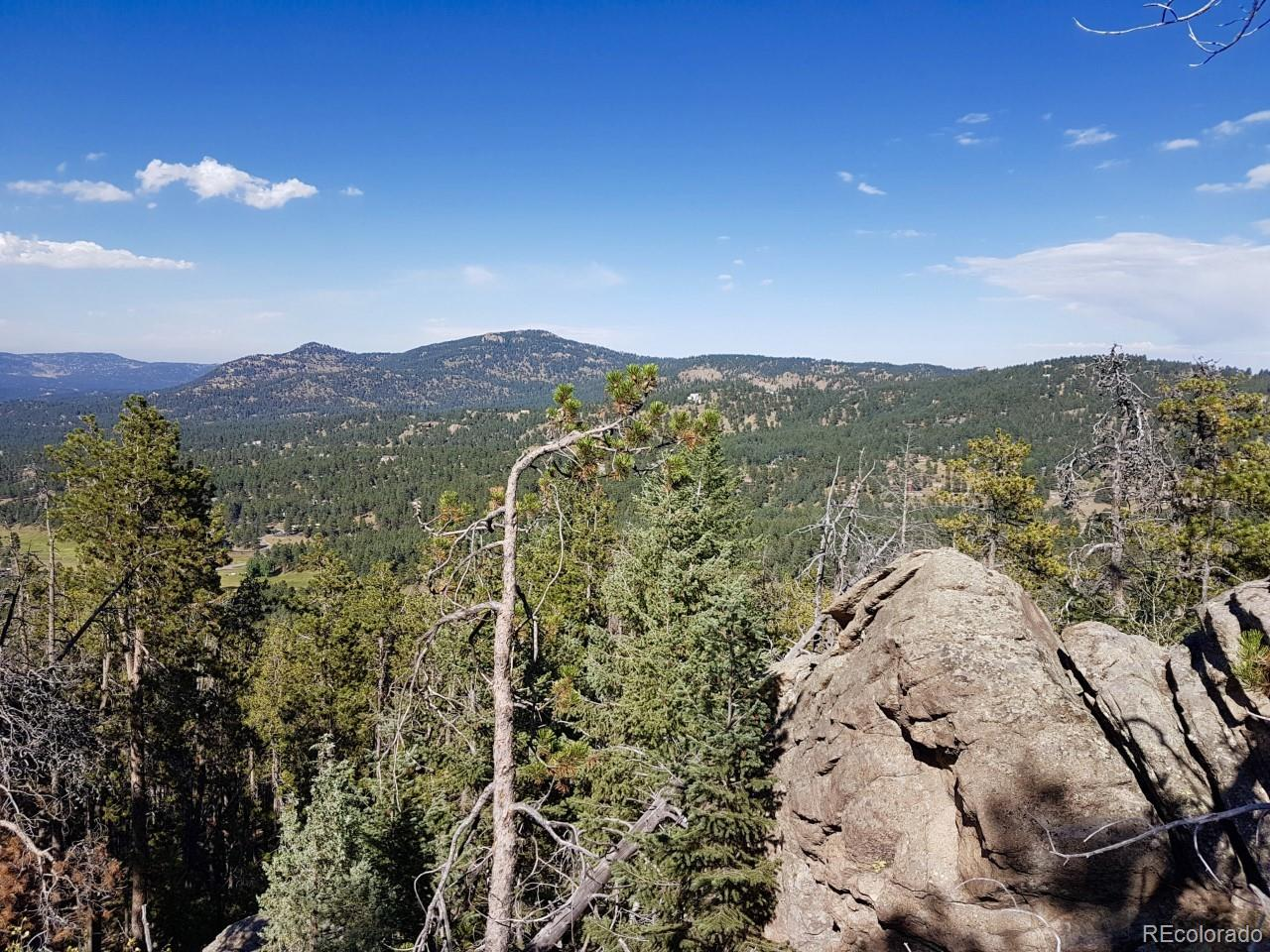 0 Berry Bush Lane, Evergreen, CO 80439 - Evergreen, CO real estate listing