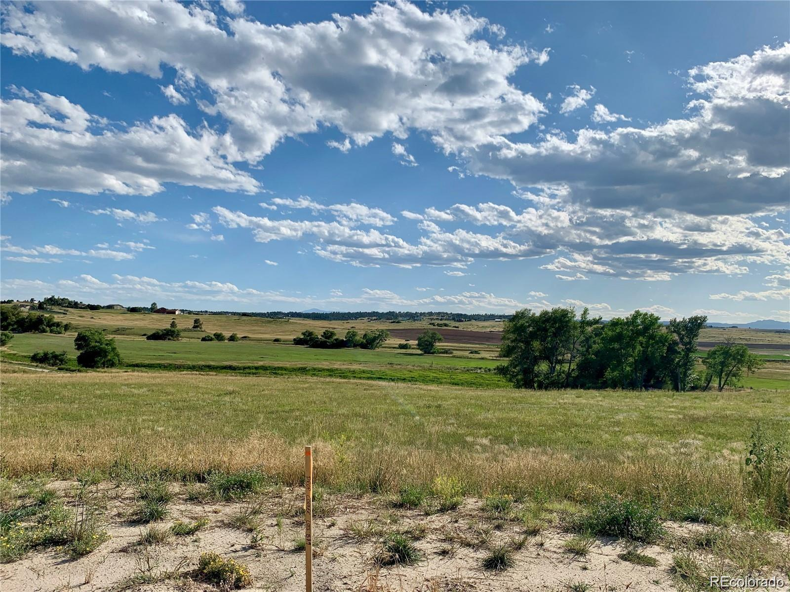 3163 Red Kit Road Property Photo - Franktown, CO real estate listing