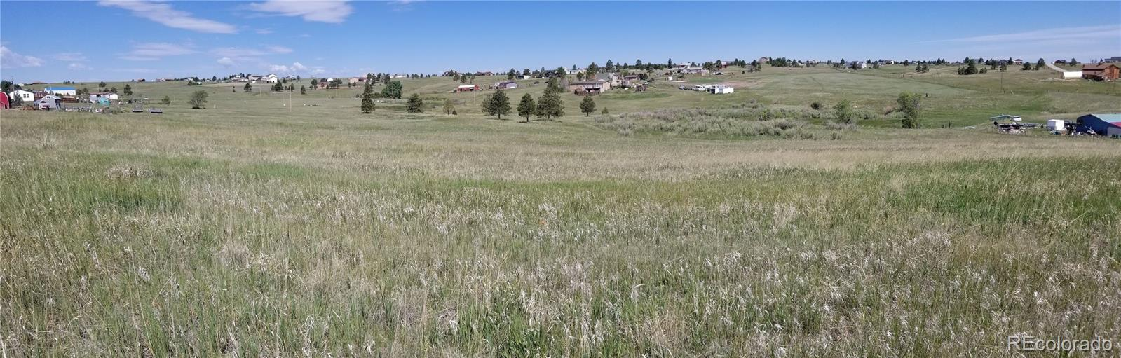 13370 Forest Green Drive Property Photo - Elbert, CO real estate listing