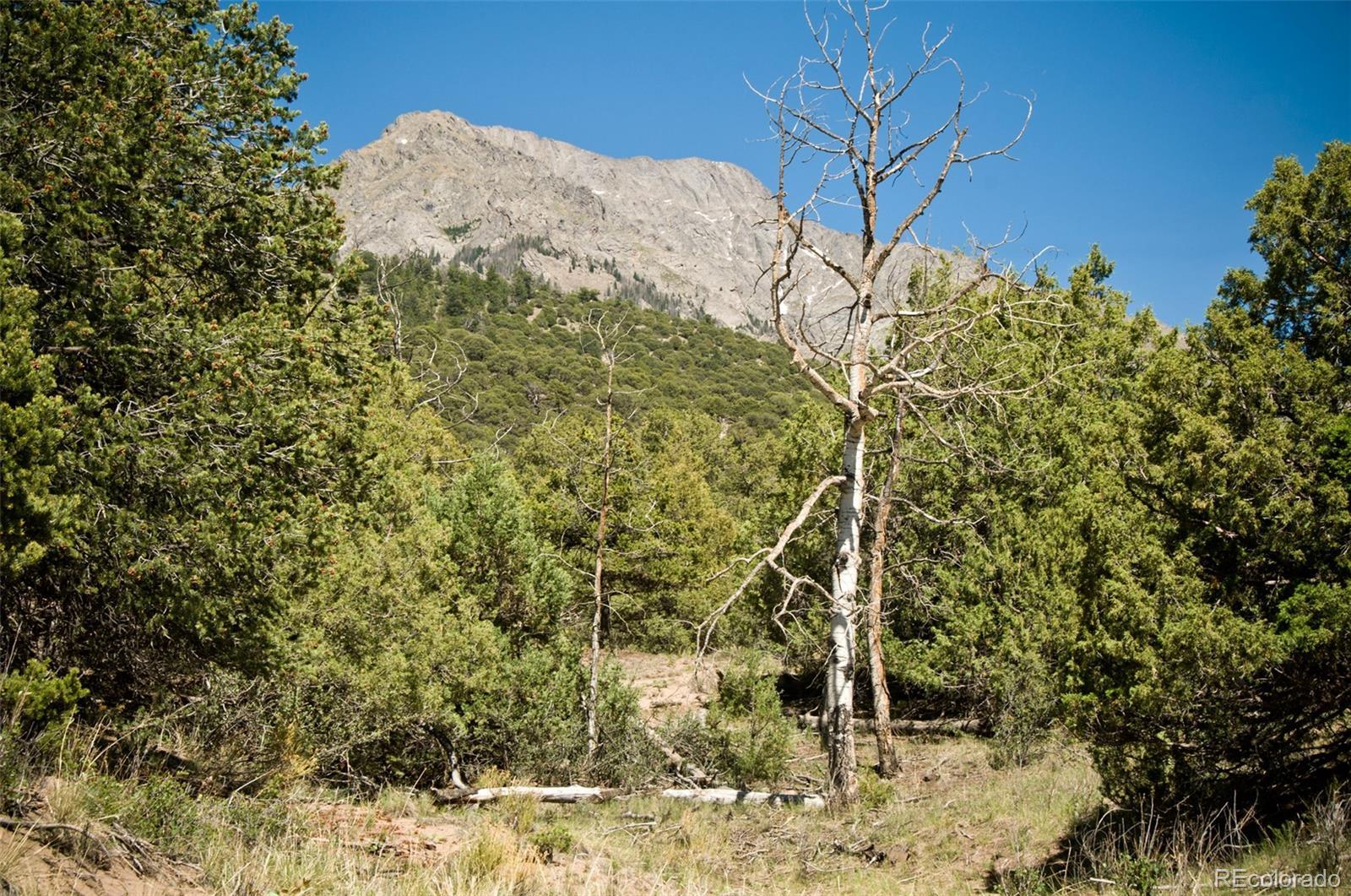 838 Pine Cone Way Property Photo - Crestone, CO real estate listing