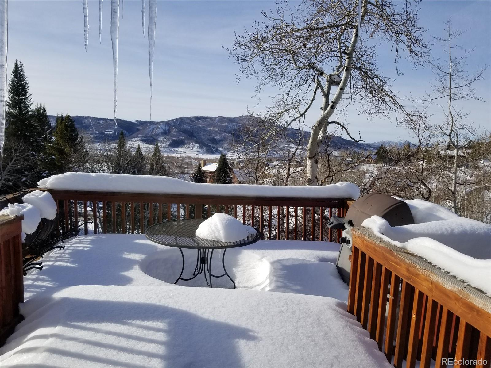 Ski Ranches Real Estate Listings Main Image