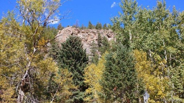 4833 Hwy 103 Property Photo - Idaho Springs, CO real estate listing