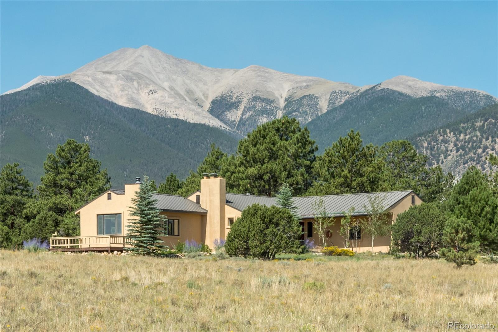 17890 County Road 261i, Nathrop, CO 81236 - Nathrop, CO real estate listing