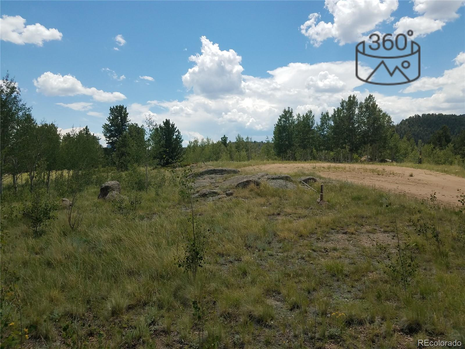 938 Castle Mountain Drive Property Photo - Florissant, CO real estate listing