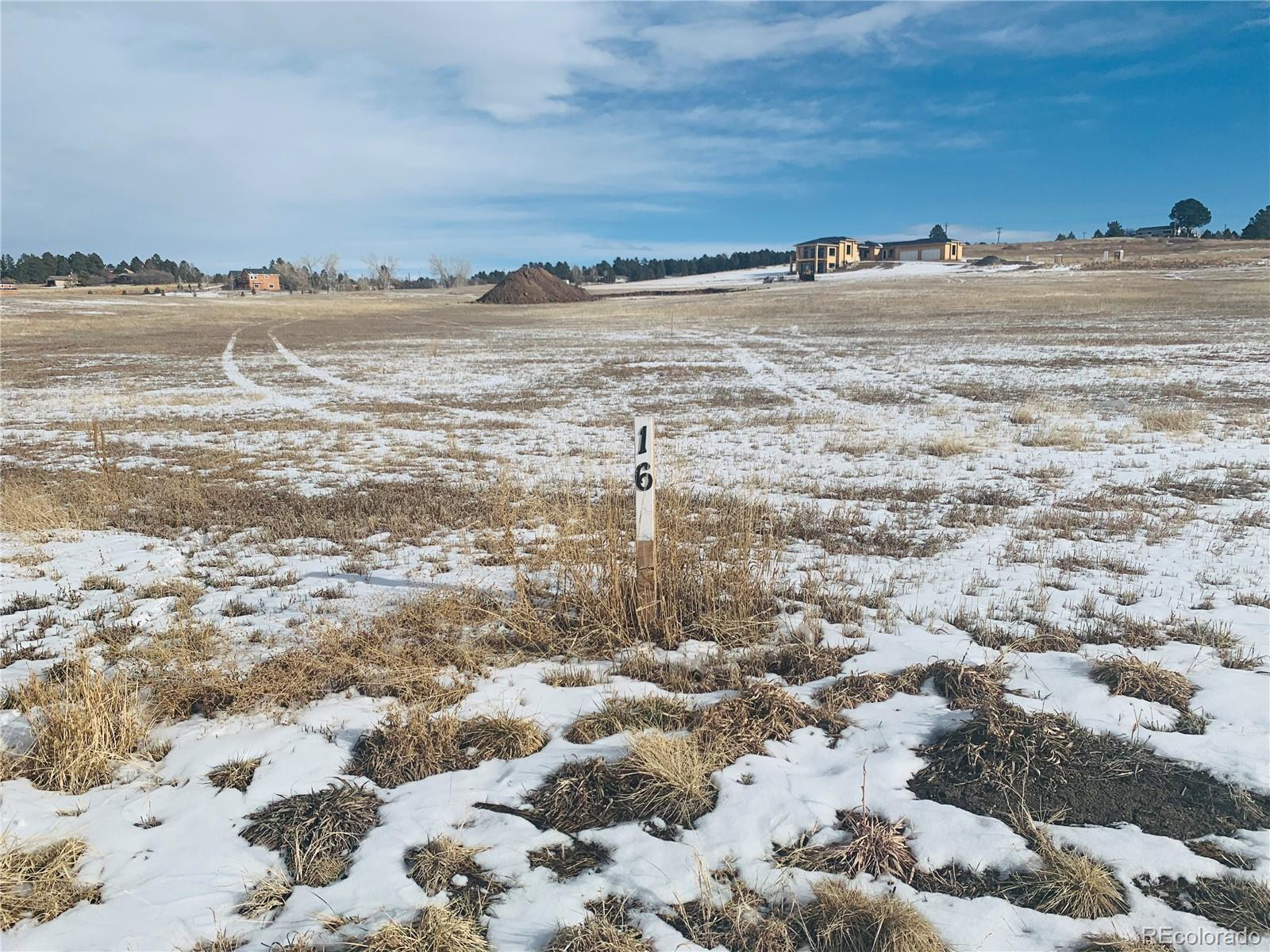 2870 Red Kit Road Property Photo - Franktown, CO real estate listing