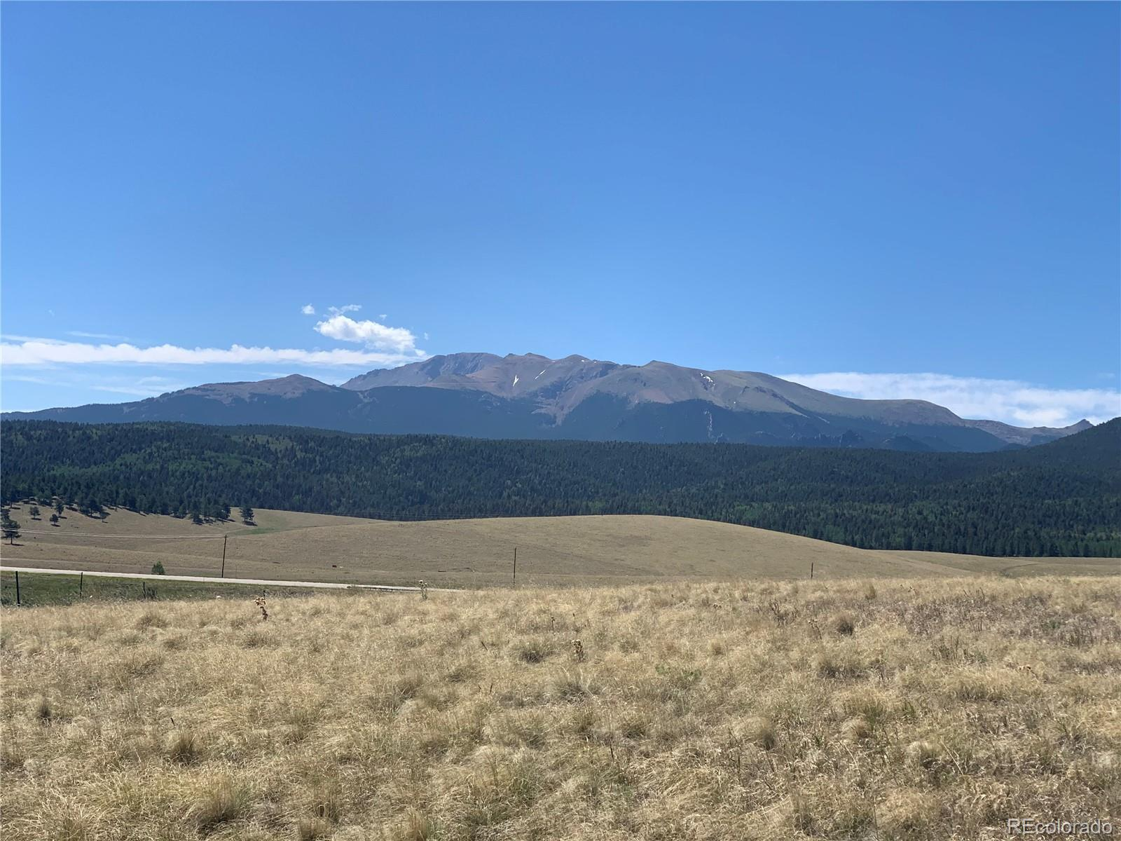 254 County Road 25 Property Photo - Divide, CO real estate listing