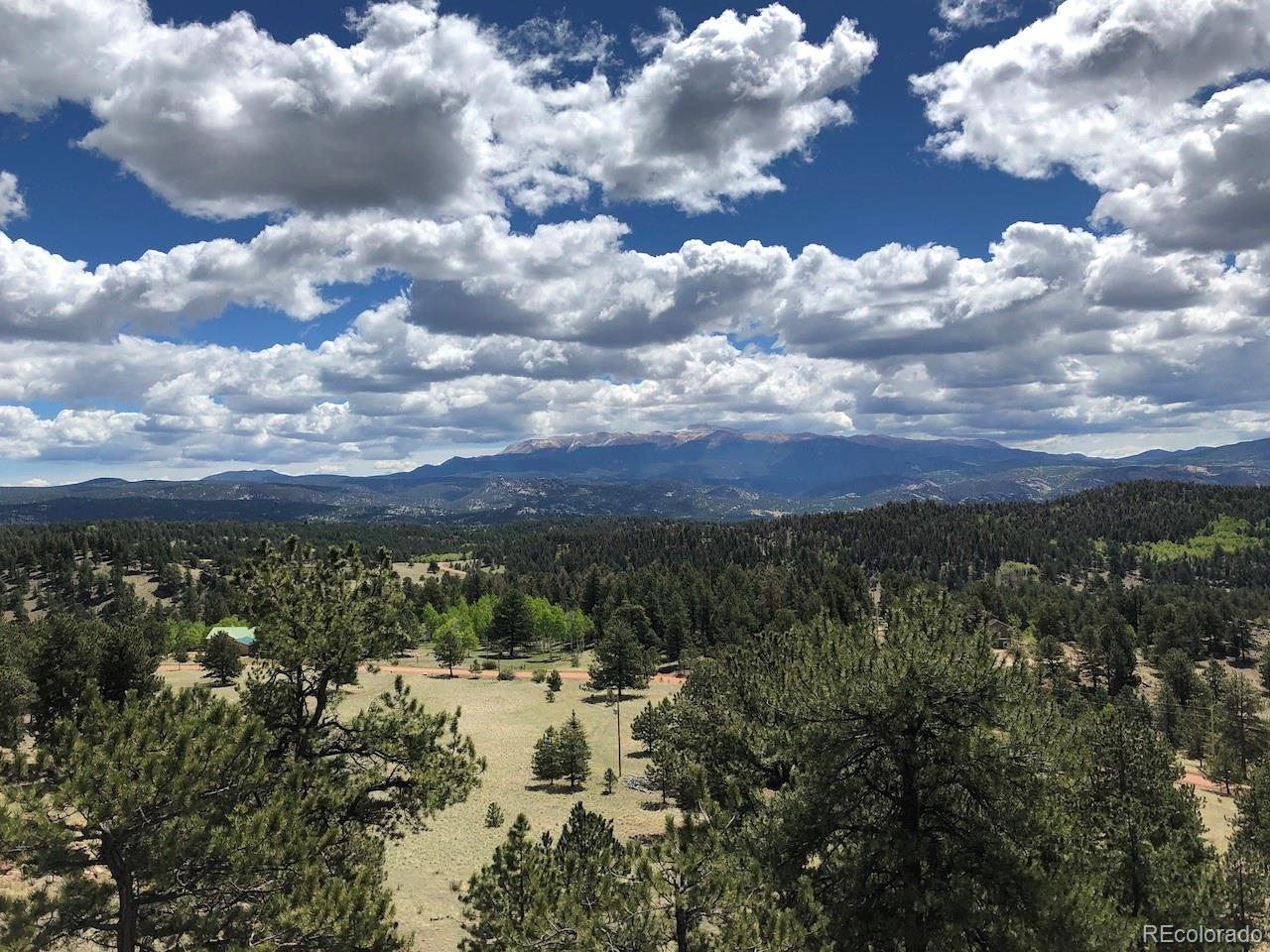 107 Panorama Drive Property Photo - Florissant, CO real estate listing