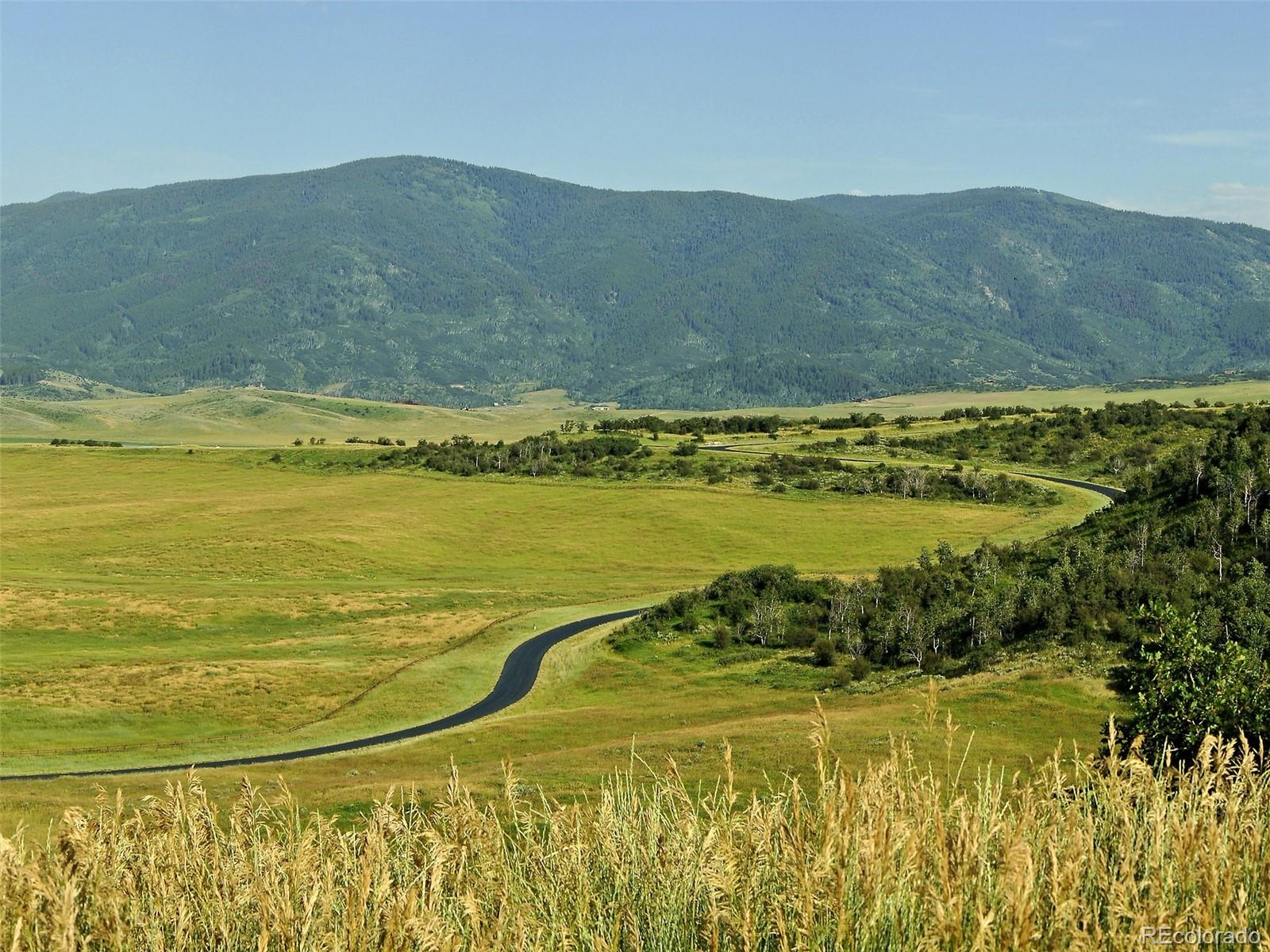 31375 Hunt Horse Lane Property Photo - Steamboat Springs, CO real estate listing