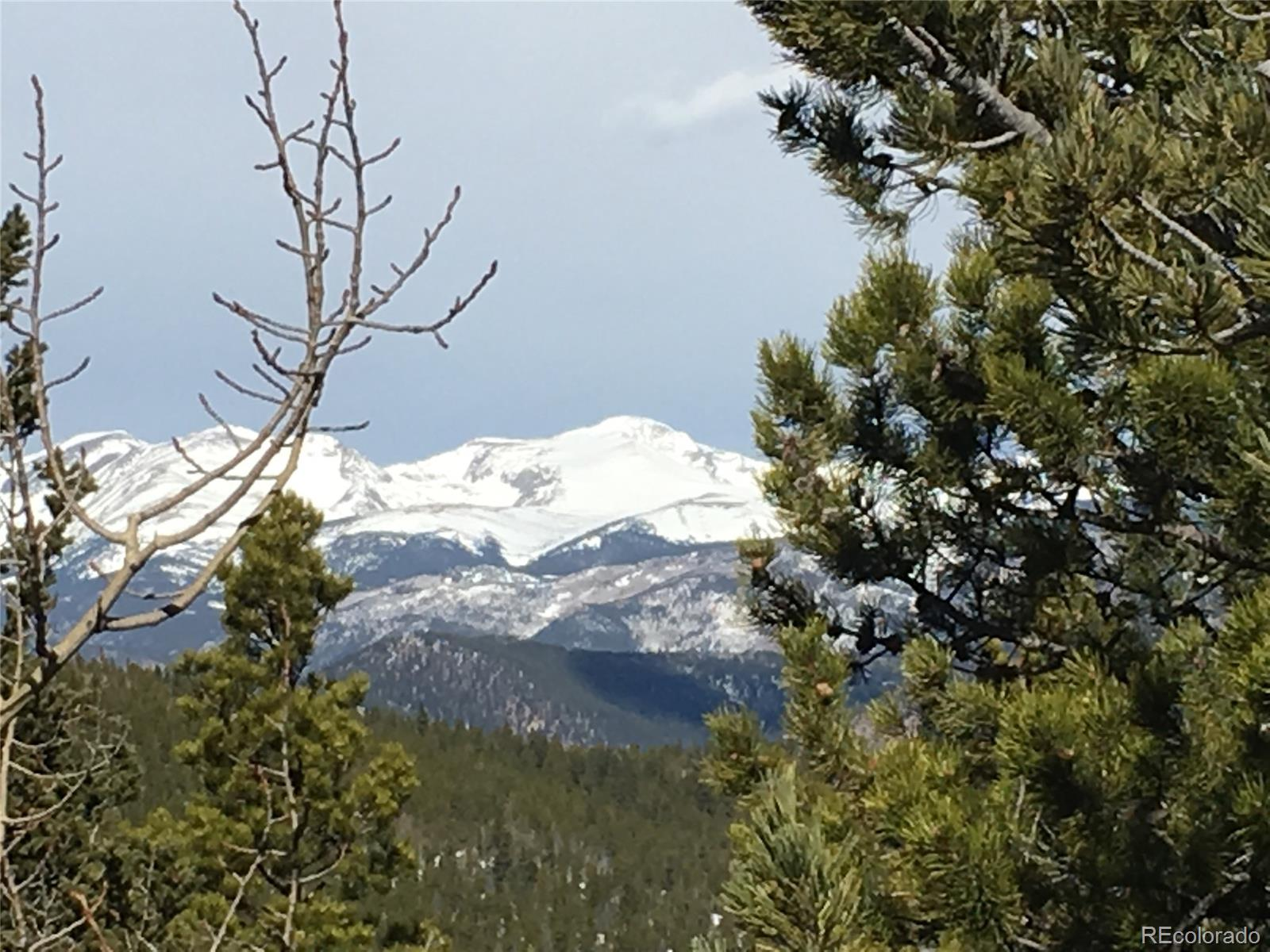 4 Beaver Brook Canyon Road, Evergreen, CO 80439 - Evergreen, CO real estate listing