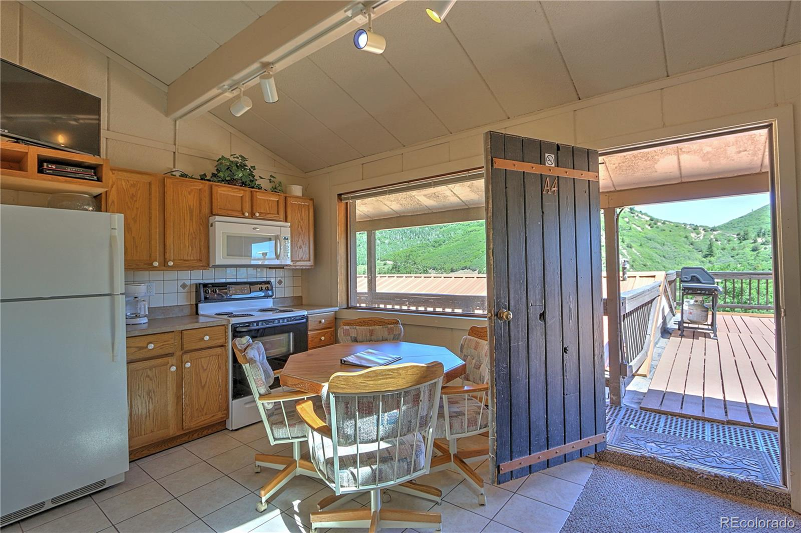 11101 County Road 117 #4A Property Photo - Glenwood Springs, CO real estate listing