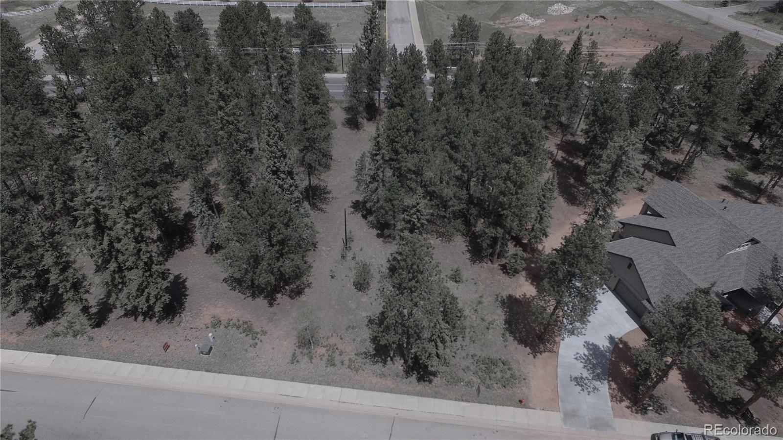 620 Chipmunk Drive Property Photo - Woodland Park, CO real estate listing