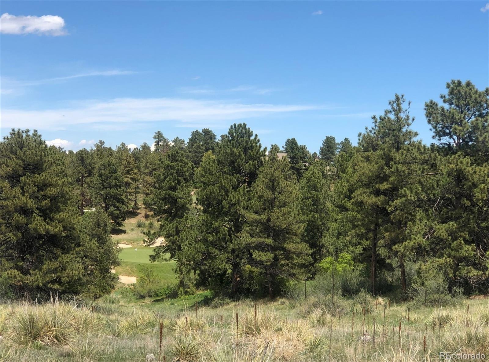 7906 Copper Wind Court Property Photo - Parker, CO real estate listing