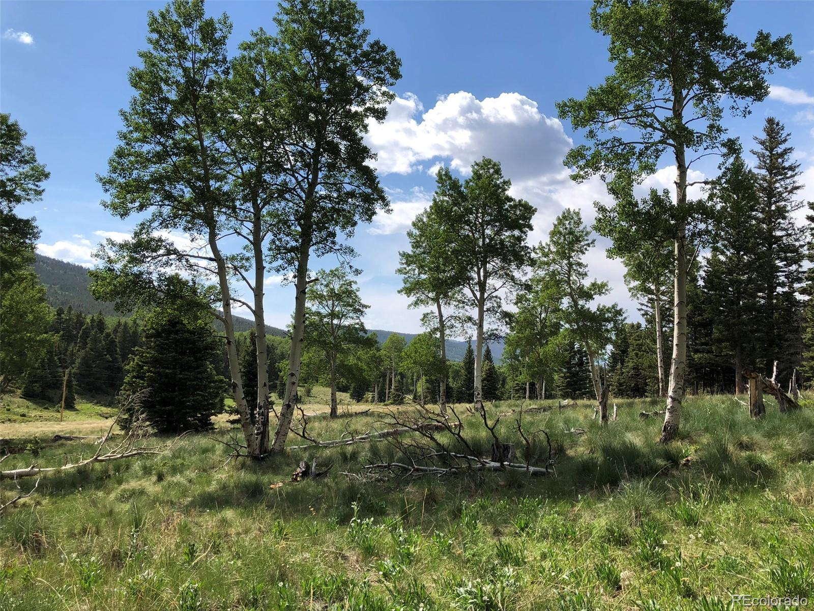 3353 & 3354 Forbes Park Loop Property Photo - Fort Garland, CO real estate listing