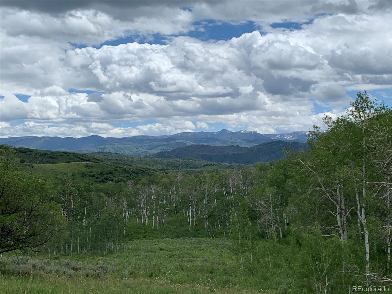 56005 Hannahs Way Property Photo - Clark, CO real estate listing
