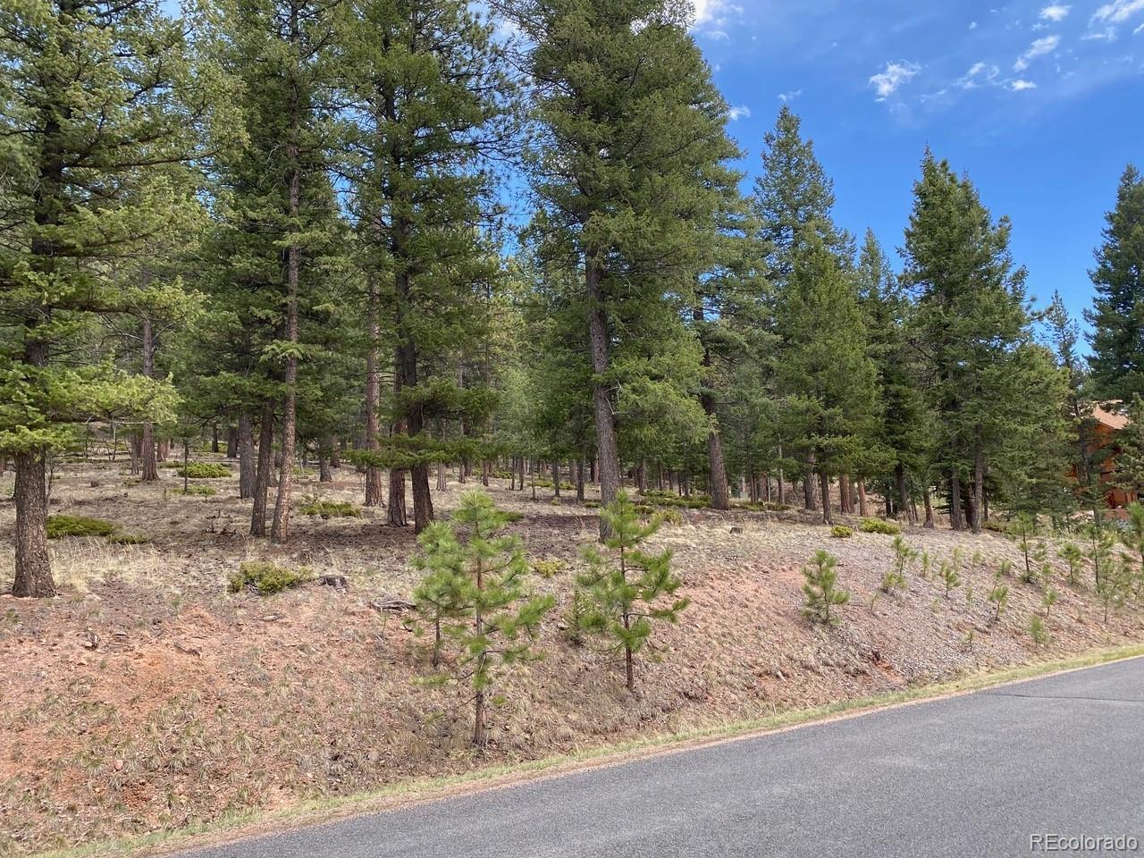 1171 Forest Edge Road Property Photo - Woodland Park, CO real estate listing
