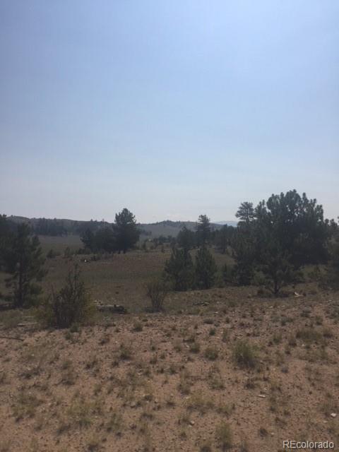 9402 Caddo Road Property Photo - Hartsel, CO real estate listing