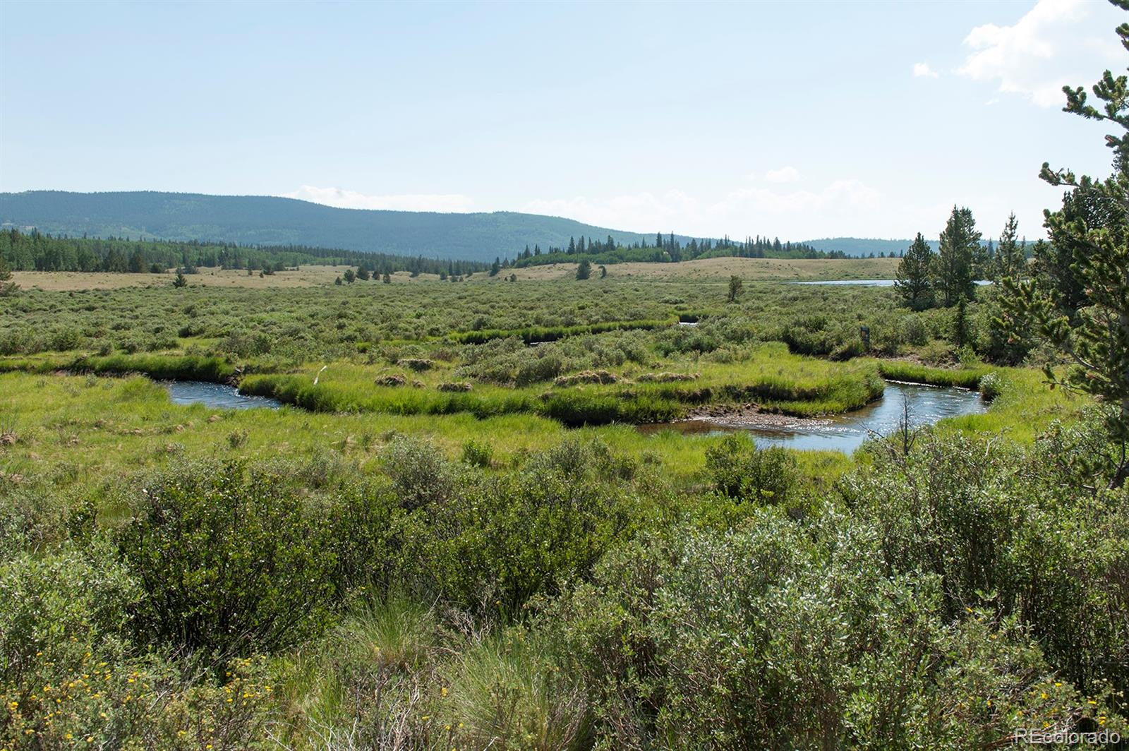 268 High River Court Property Photo - Alma, CO real estate listing