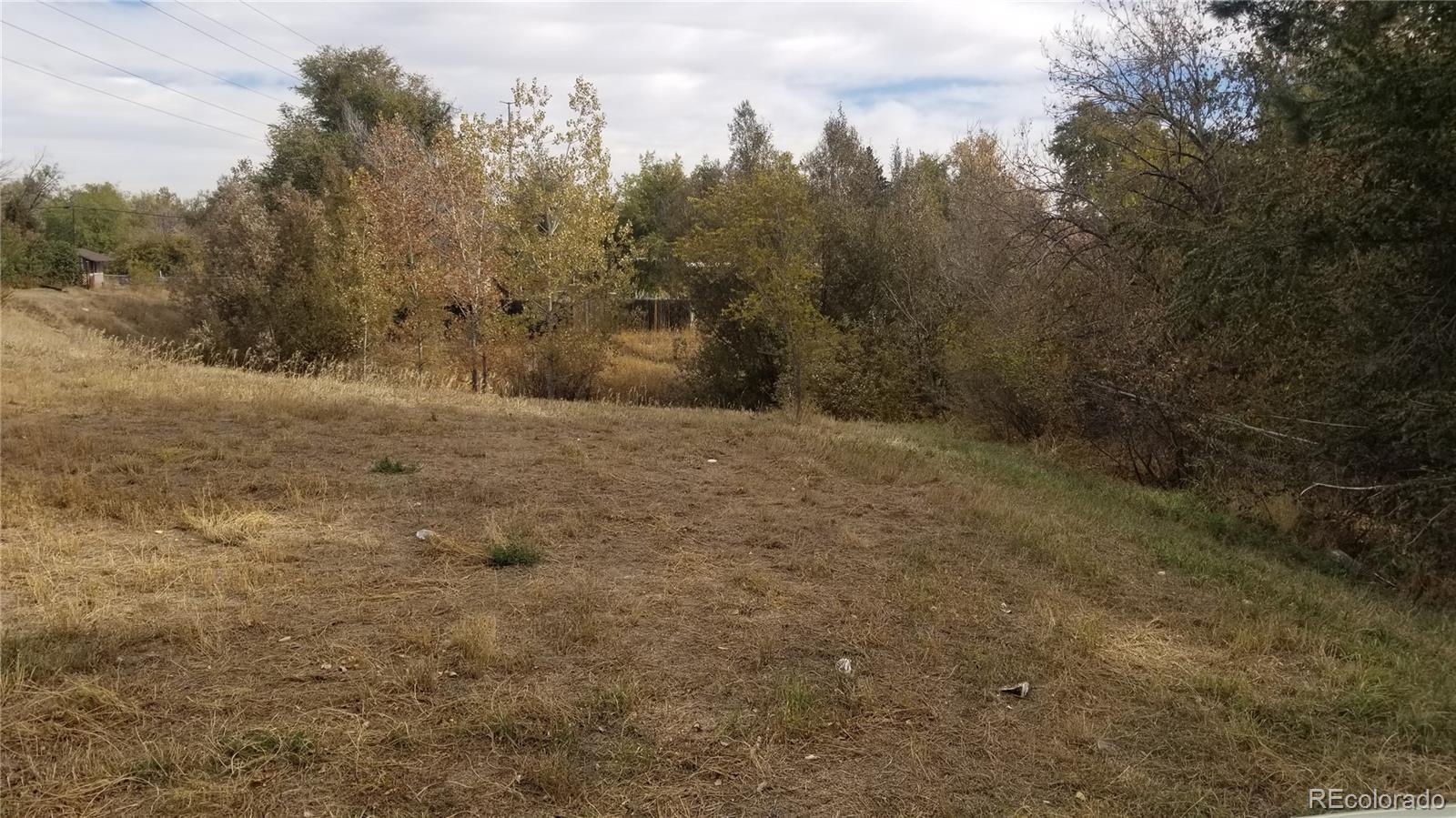 1020 N Vivian Street Property Photo - Lakewood, CO real estate listing