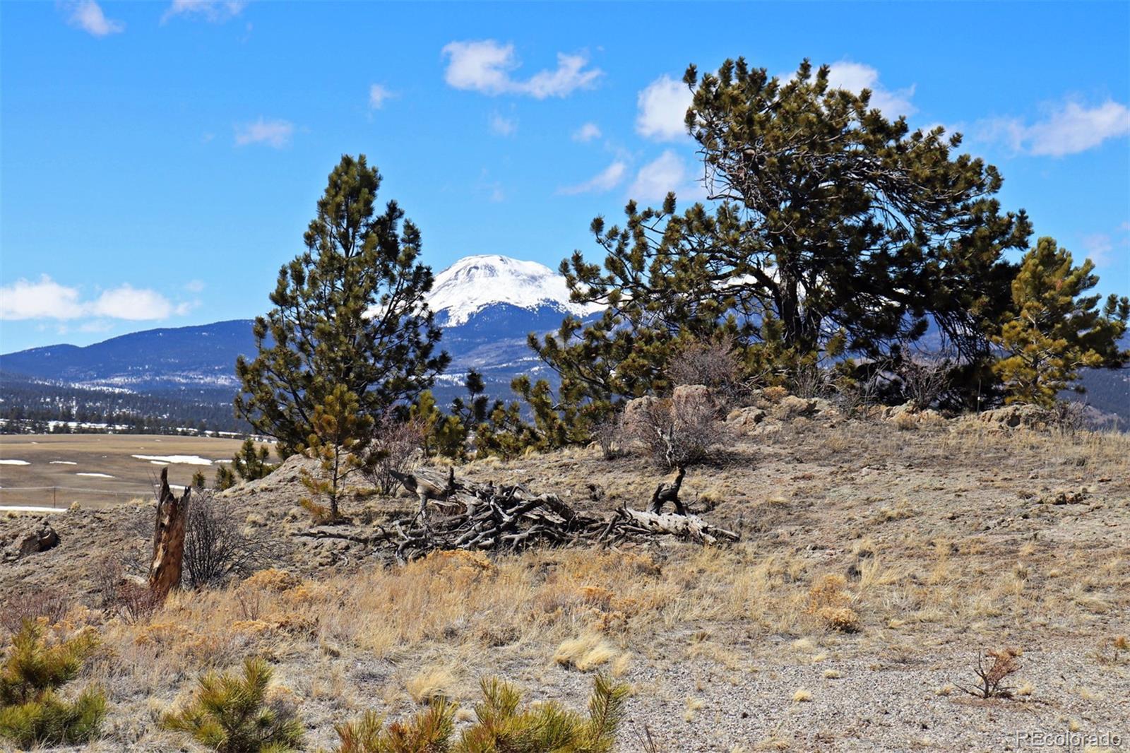 260 Saddle Trail Property Photo - Hartsel, CO real estate listing