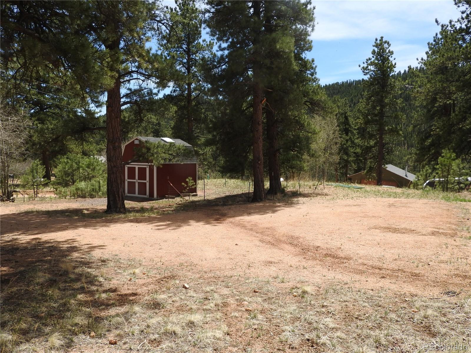 21 Appleby Street Property Photo - Bailey, CO real estate listing