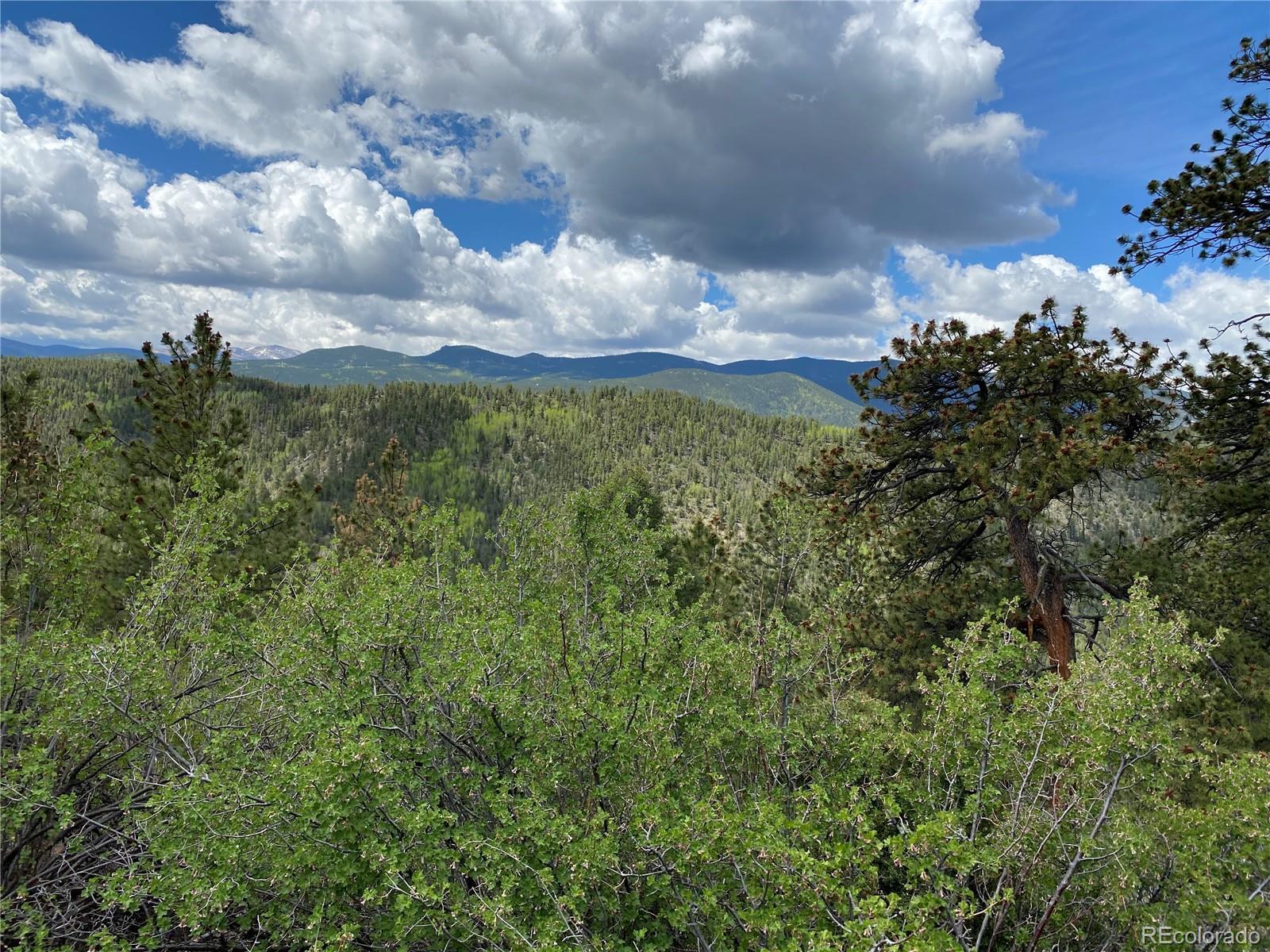 000 Saddle Drive Property Photo - Idaho Springs, CO real estate listing