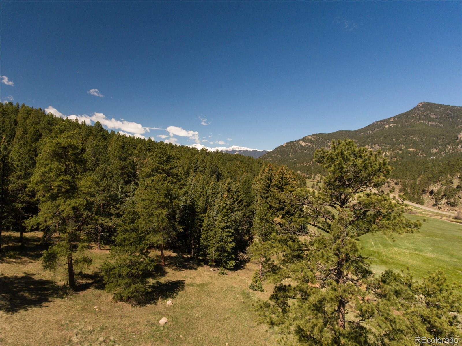 101 Fox Hollow Road Property Photo - Evergreen, CO real estate listing