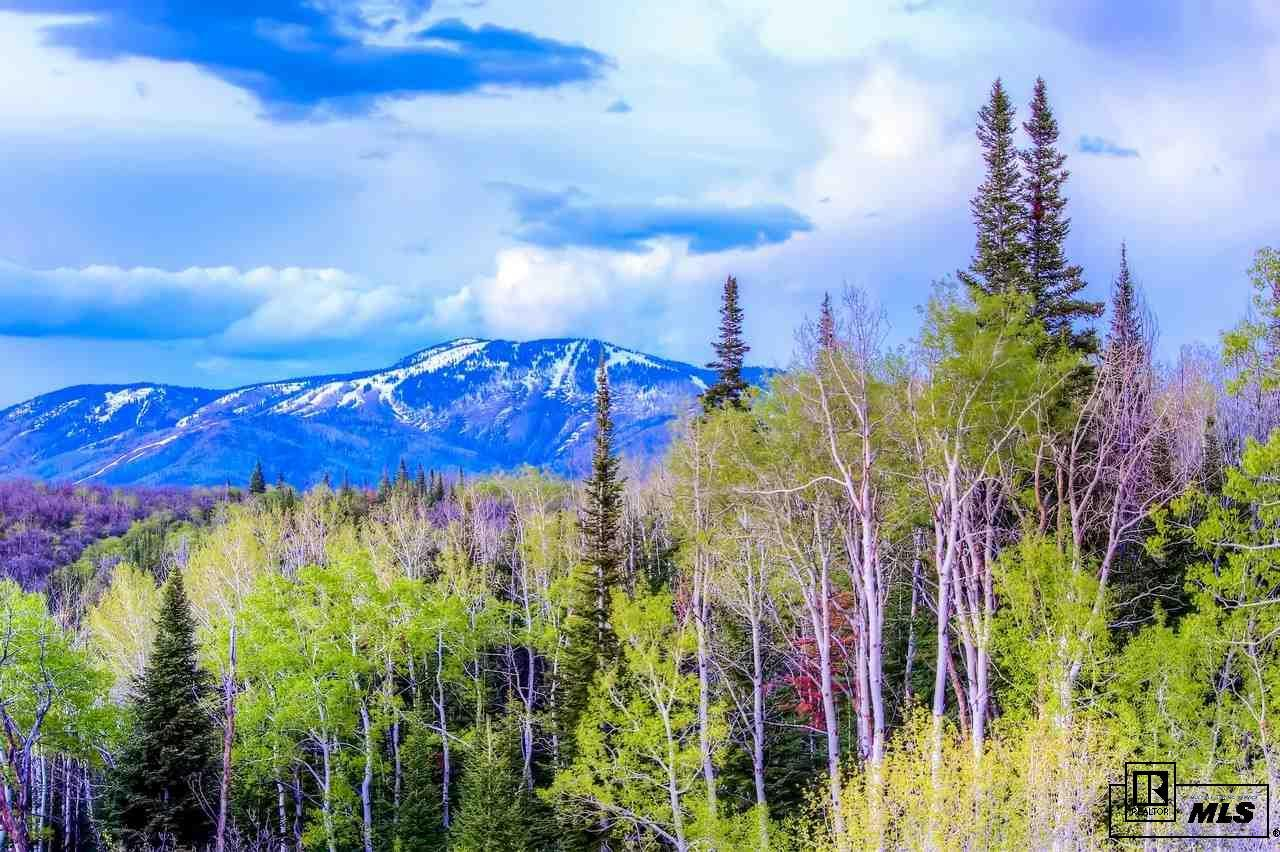 28600 Skyline Drive Property Photo - Steamboat Springs, CO real estate listing