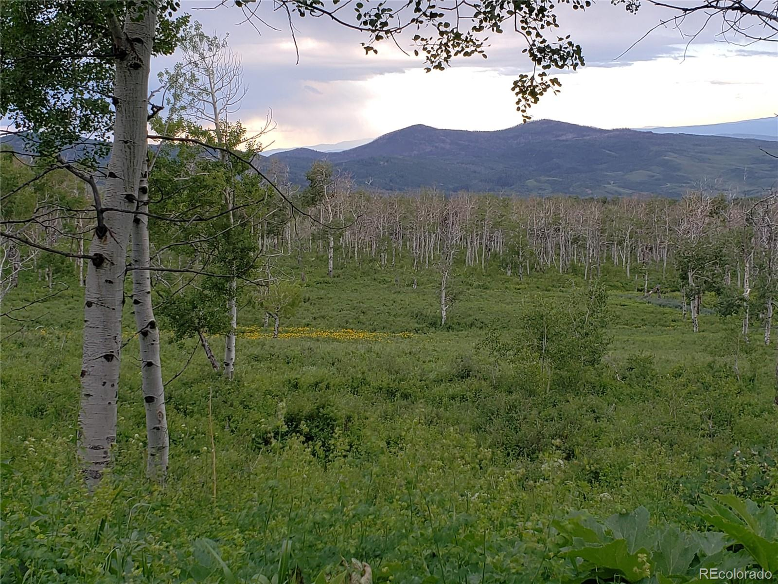 52325 Quaker Mountain Circle Property Photo - Hayden, CO real estate listing