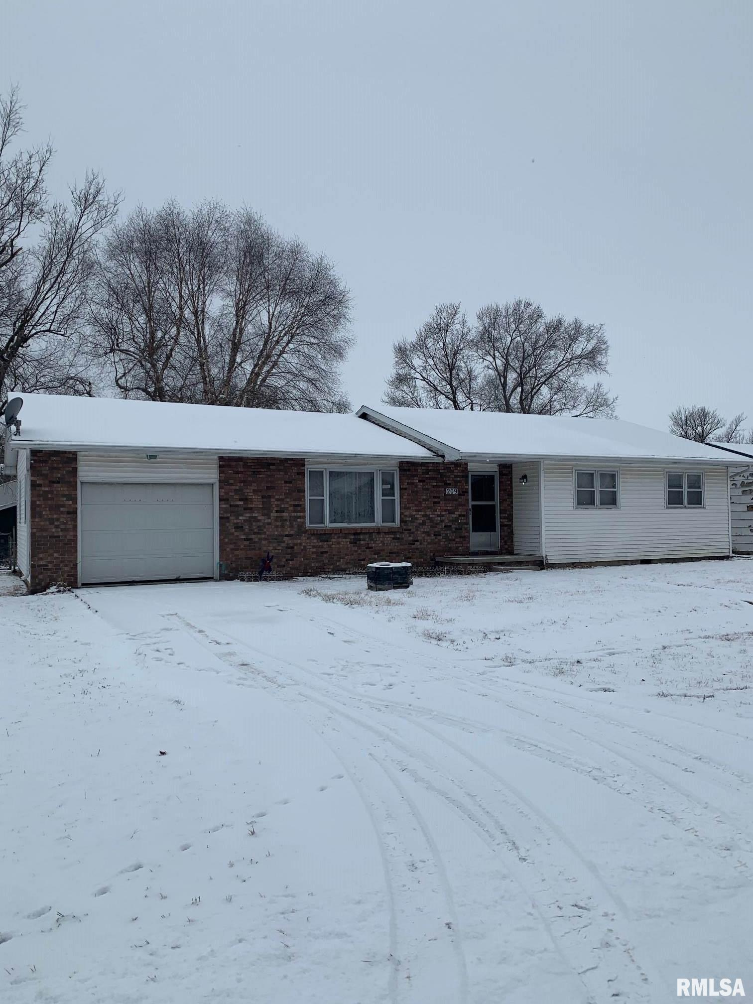 209 N Dauphin Property Photo - Chestnut, IL real estate listing