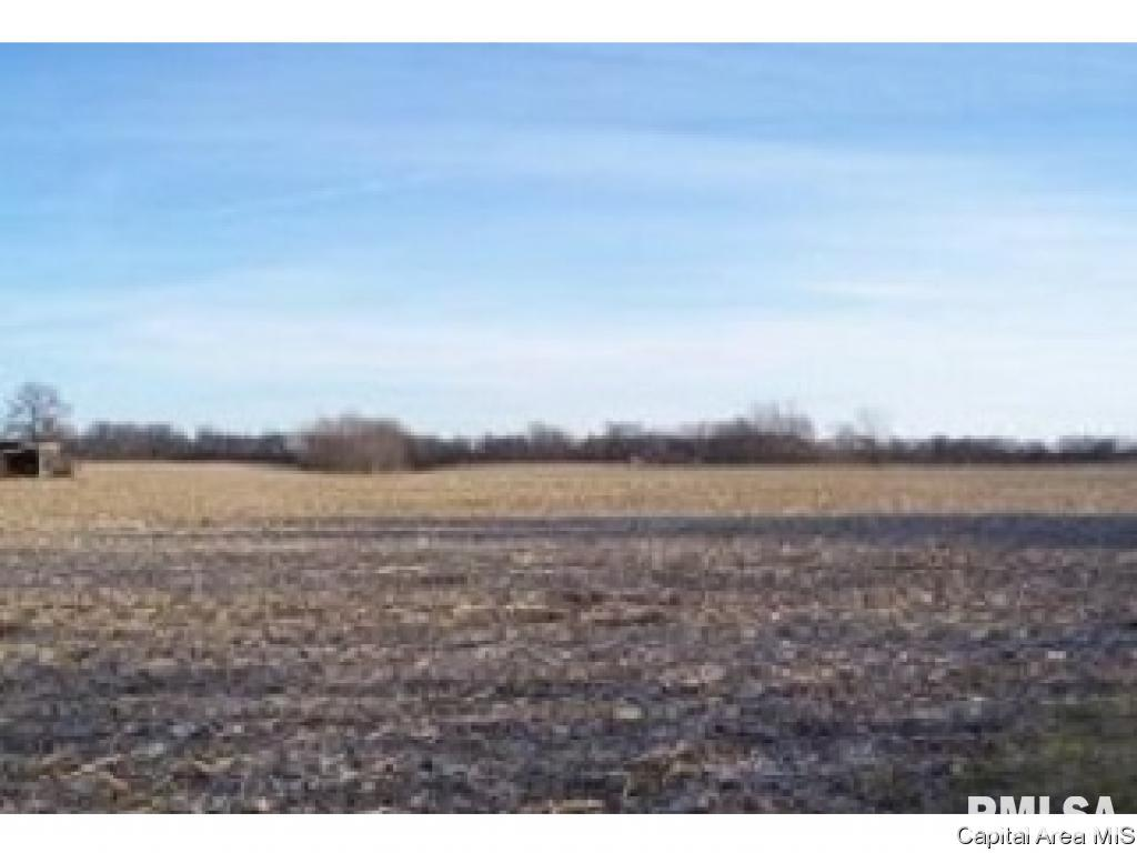 4255 Bissell Property Photo - Springfield, IL real estate listing