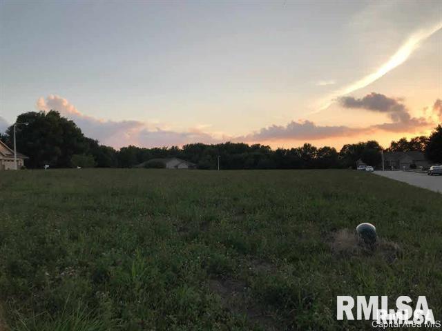 1011 Ravina Property Photo - Chatham, IL real estate listing