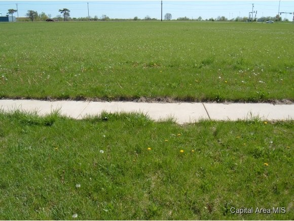 3501 MITCHELL Property Photo - Springfield, IL real estate listing