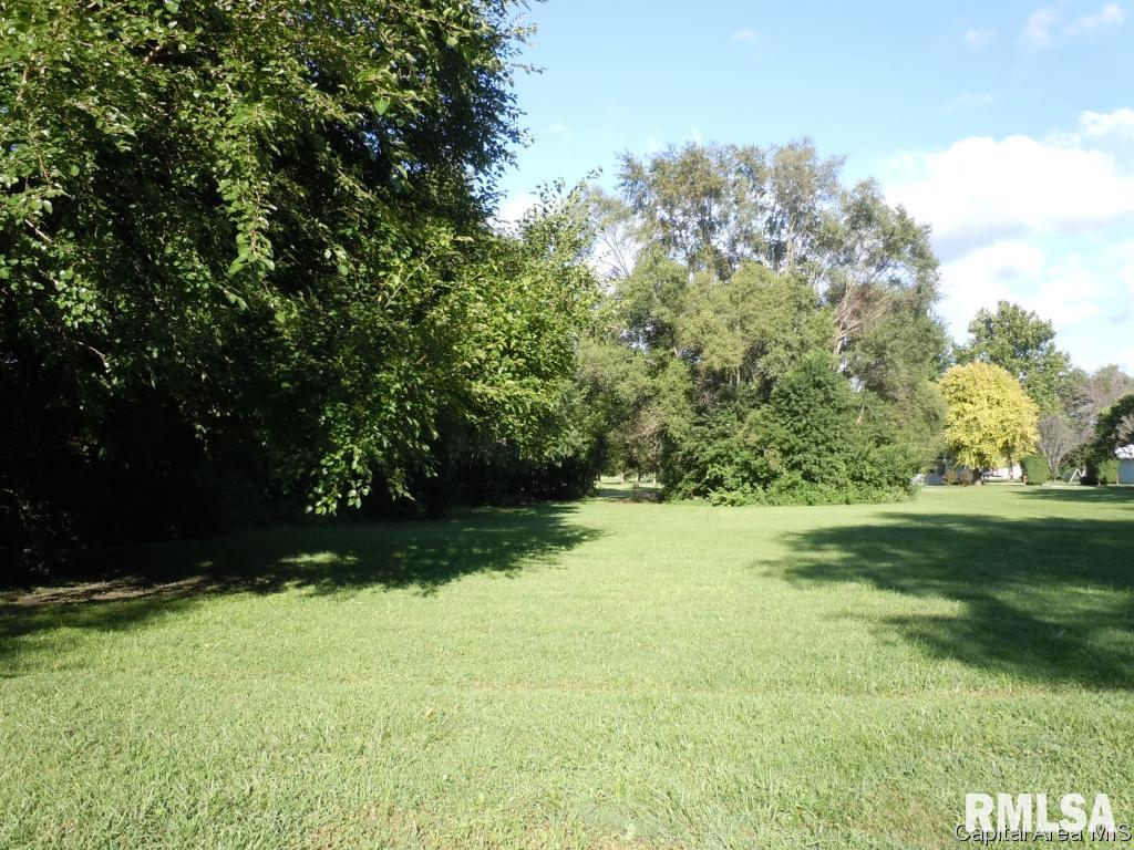 Lot 4, 5, 6 S 10TH Property Photo - Monmouth, IL real estate listing