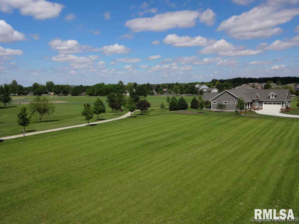 920 CHESTNUT Property Photo - Williamsville, IL real estate listing