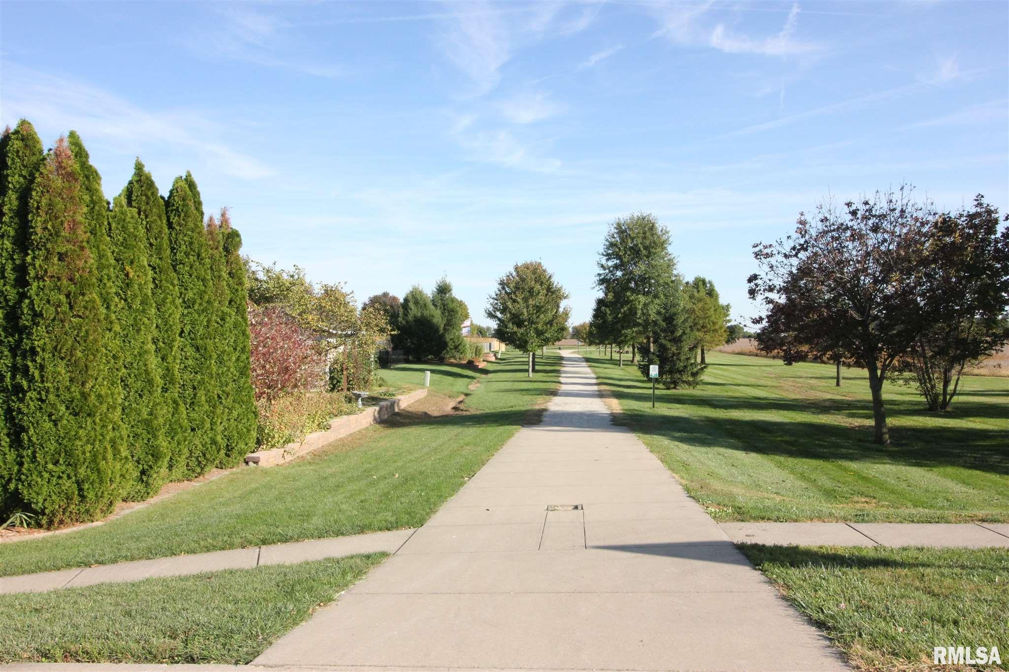 417 BURR OAK Property Photo - Williamsville, IL real estate listing