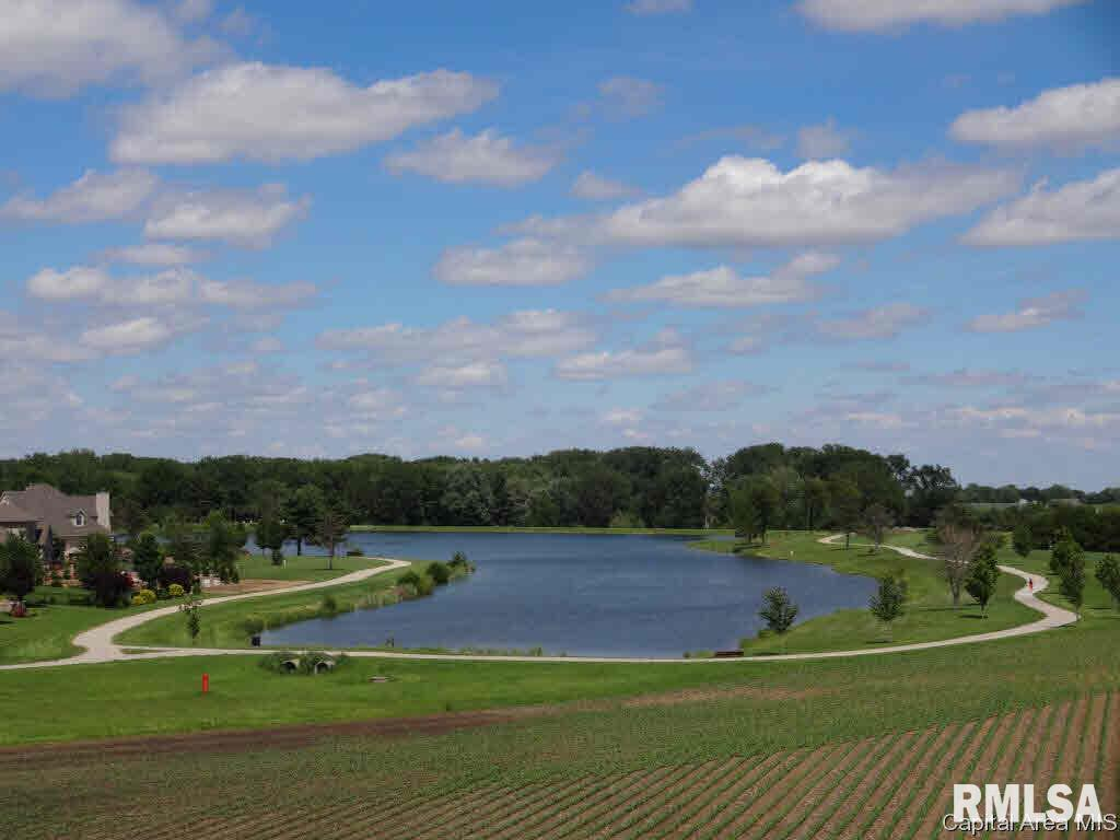 412 BURR OAK Property Photo - Williamsville, IL real estate listing