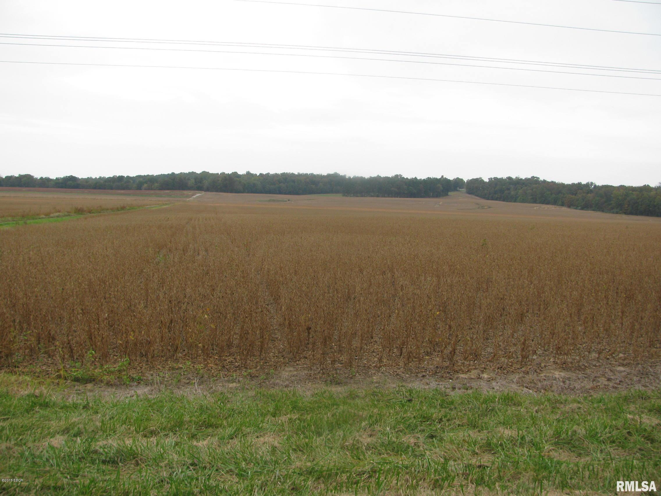 000000 CLAYTON Property Photo - Carbondale, IL real estate listing