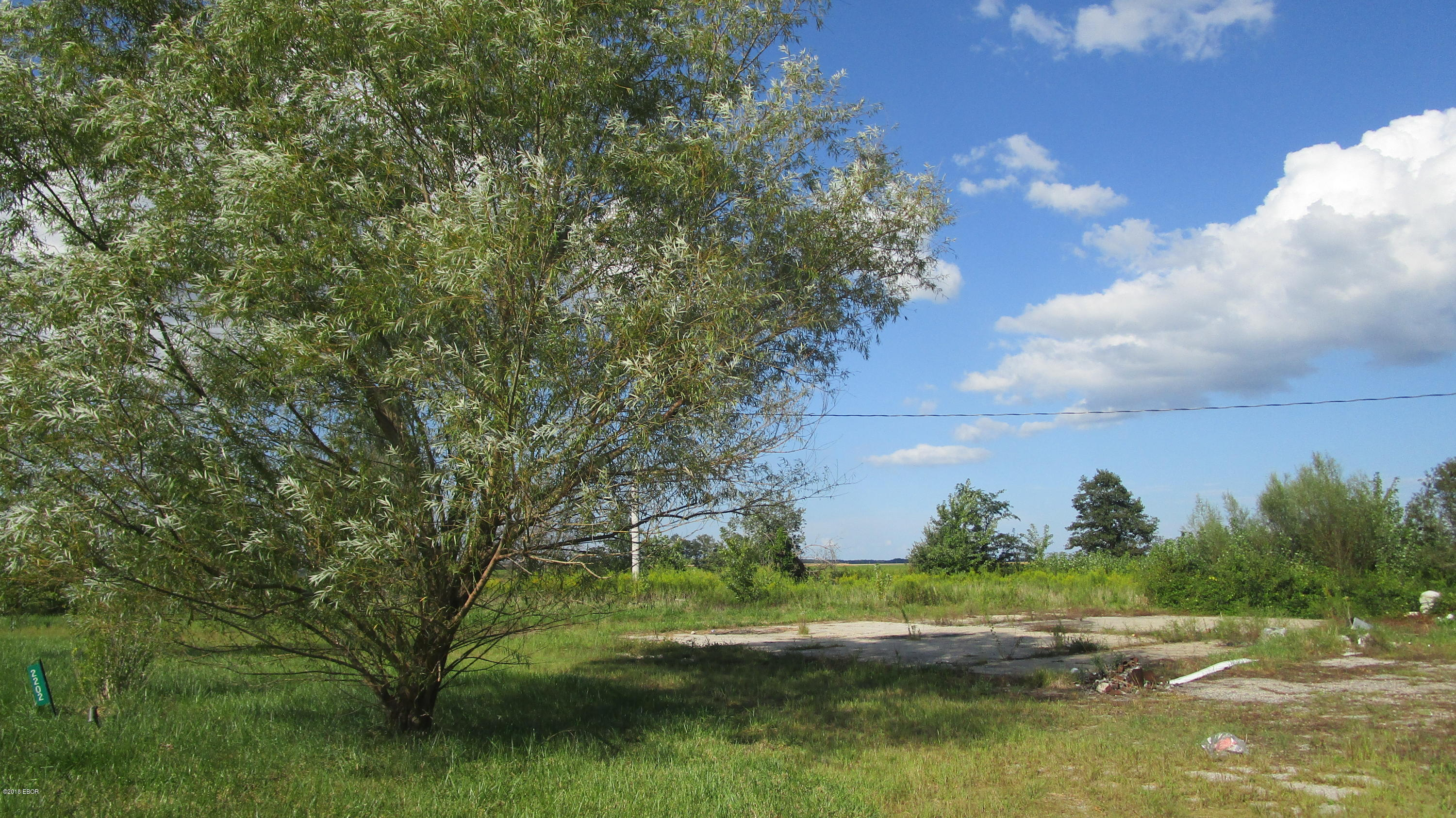 2202 S Highway 45 Property Photo - Rinard, IL real estate listing