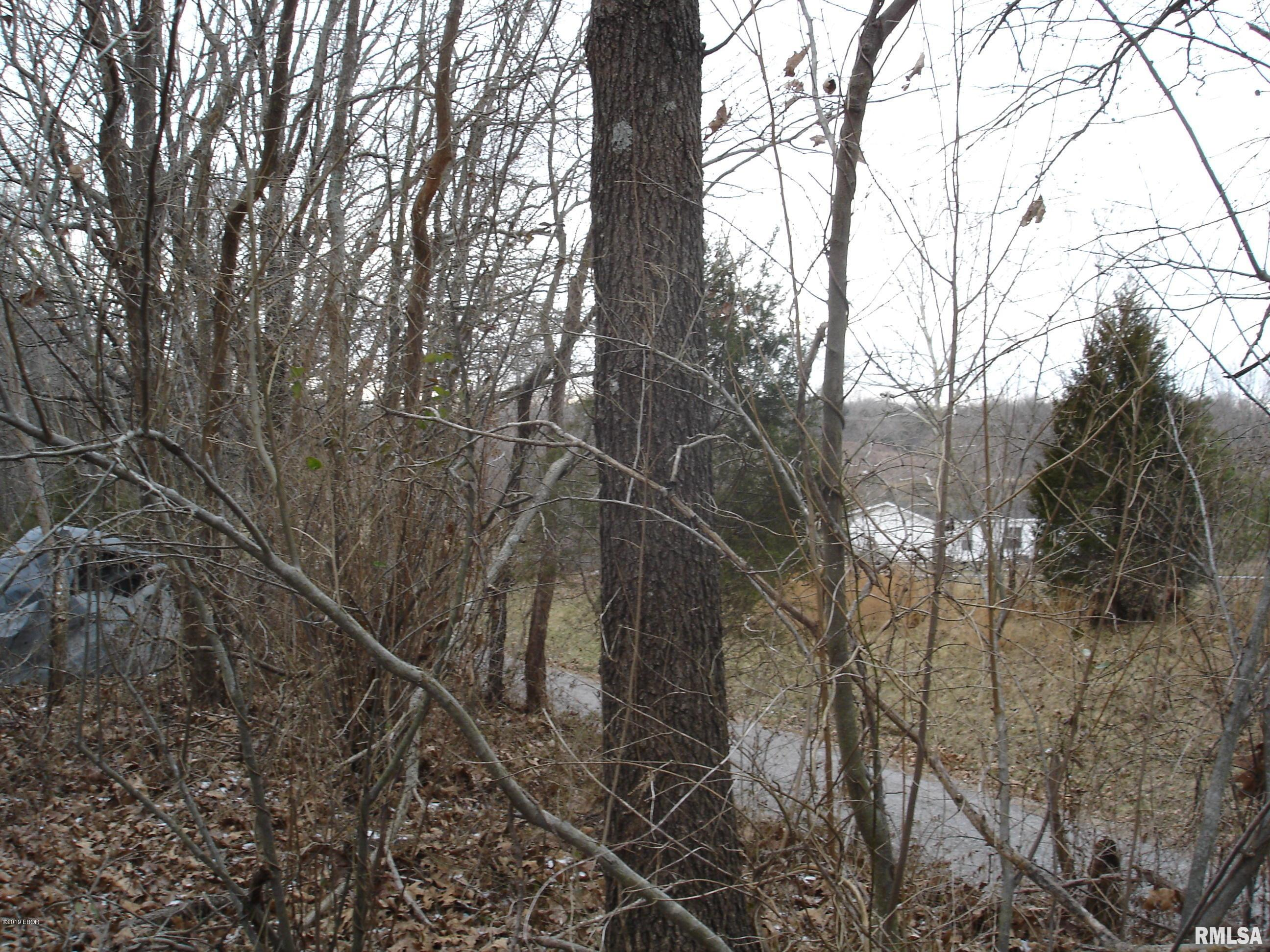 000 Stonefort Property Photo - Creal Springs, IL real estate listing