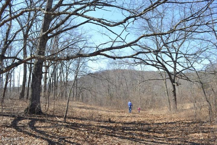 1 Garden Of The Gods Property Photo - Herod, IL real estate listing