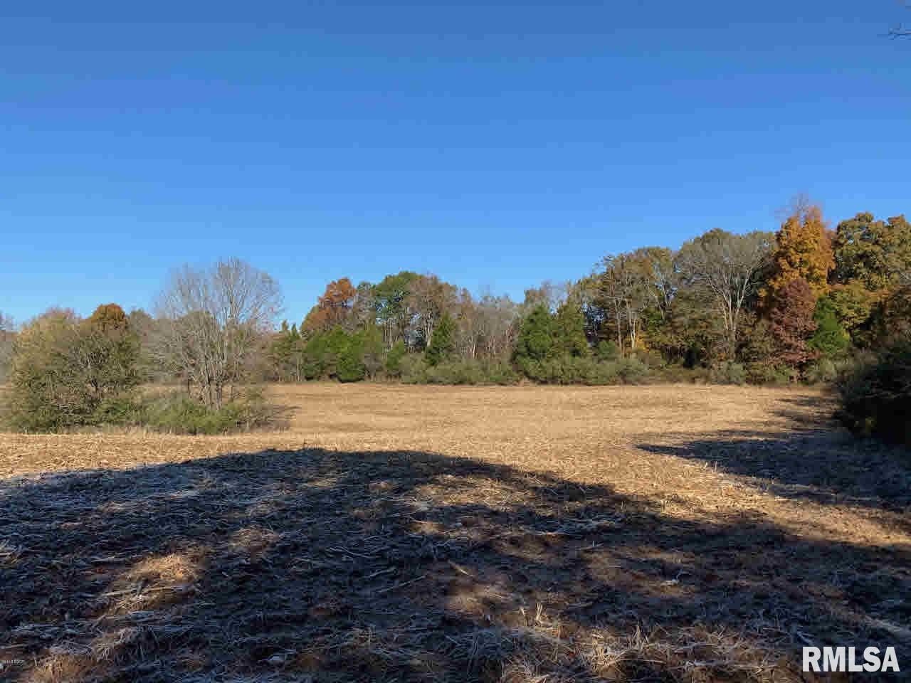 000 Hickstown Property Photo - Herod, IL real estate listing