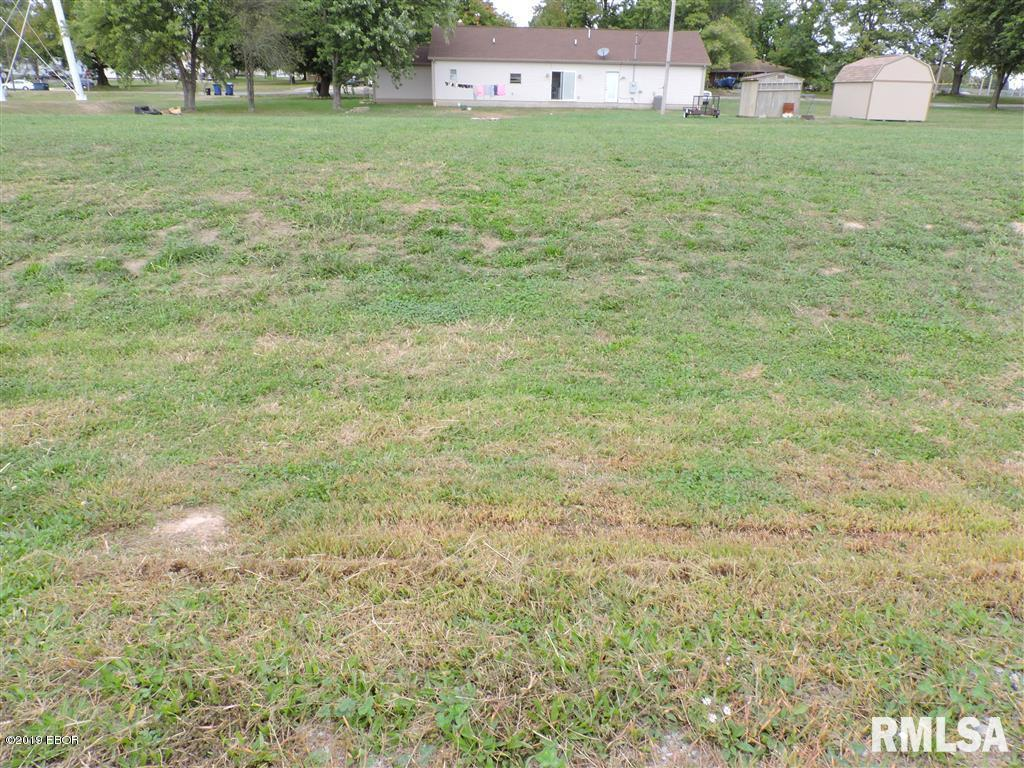 Lot 5 & MEADOW LANE Property Photo - Ava, IL real estate listing