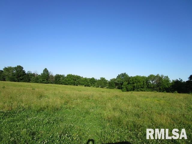 12765 E Beal Property Photo - Mt Vernon, IL real estate listing