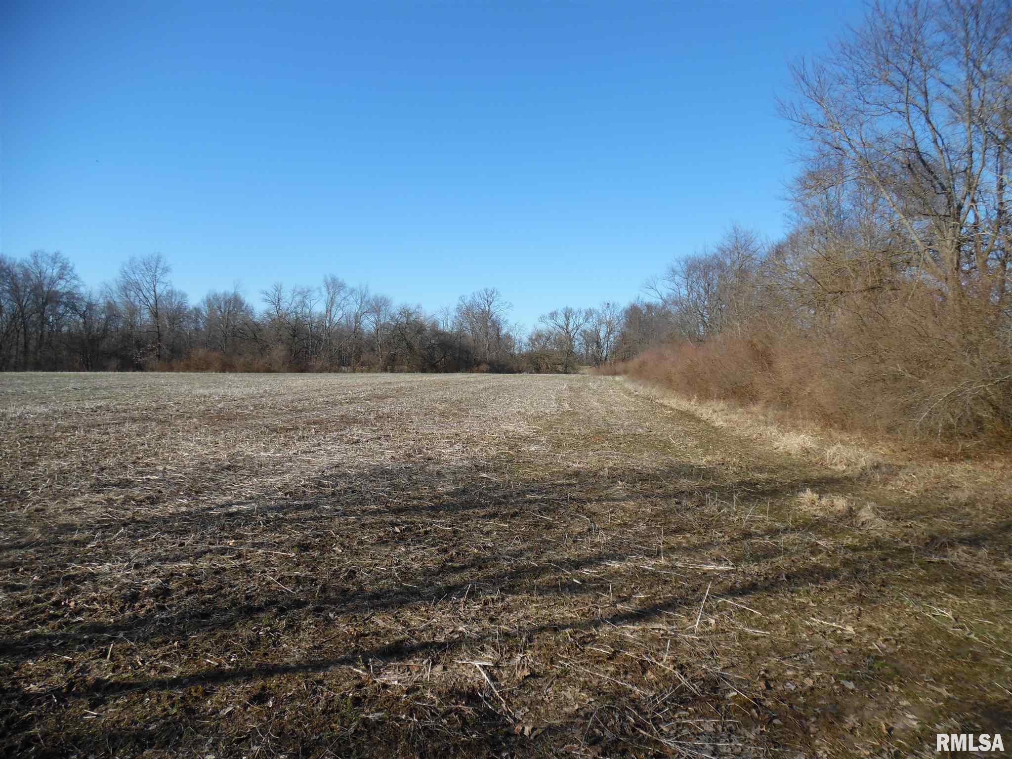 0000 Markham Property Photo - Bluford, IL real estate listing