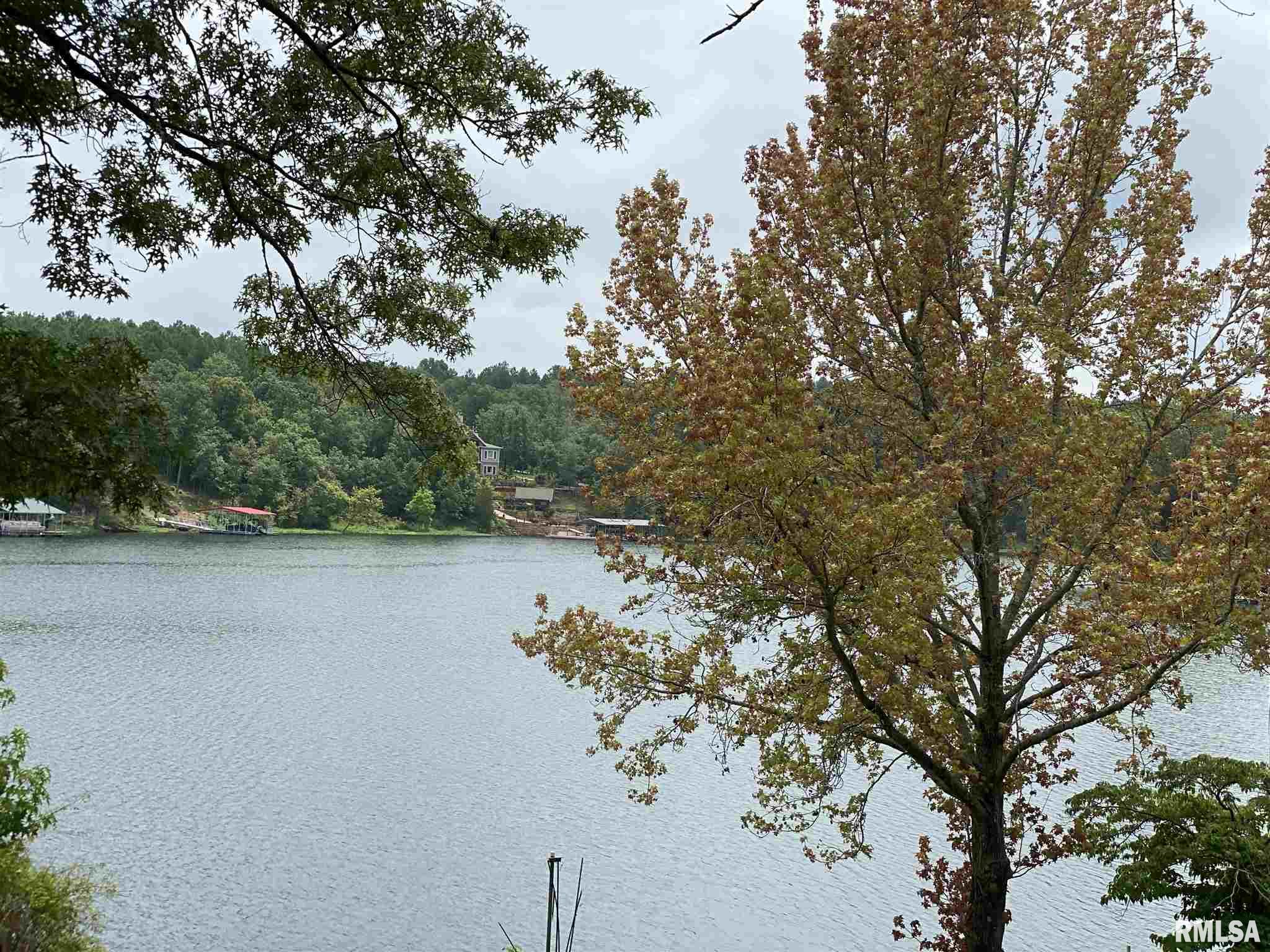 115 Lakeshore Dr South Property Photo - Goreville, IL real estate listing